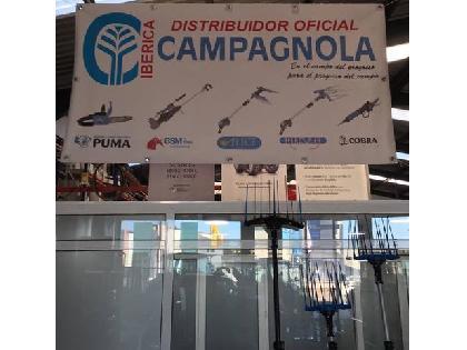 """Arrancadoras de cebollas Campagnola PEINE ACEITUNA CAMPAGNOLA"""""""