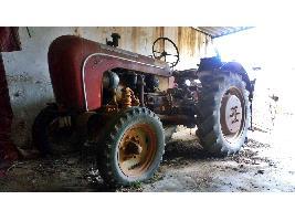 Tractores Antiguos Porsche Hofherr-Schrantz - A122 Porsche