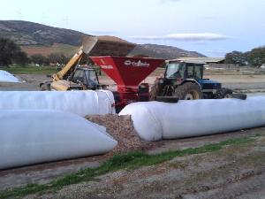 Buy Online Large balers Luclar mat 1500  second hand