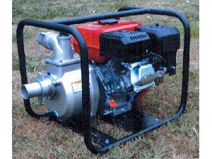 Sales Irrigation Pumps Triunfo pt20 Used