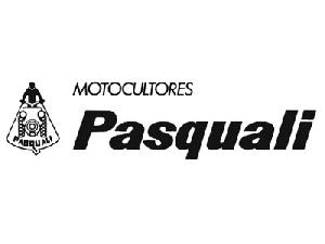 Sales Tractor Spare Parts Pasquali  Used