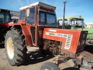 Venta de Tractores agrícolas Fiat / Fiatagri 80-66 vaa usados