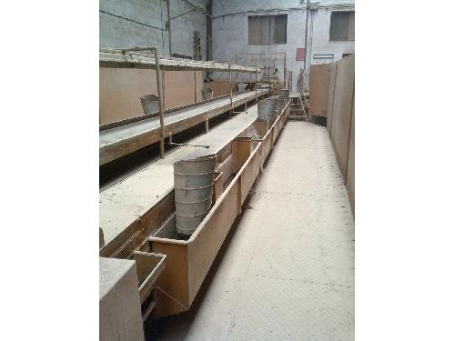 Fruit and Vegetable Sorters Fruit and Vegetable Sorters