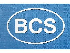 Venta de Recambios Tractor BCS  usados