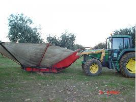 Vibrador de olivos CON PARAGUA SAEZ Y MORALES