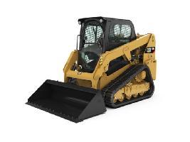 239D CAT