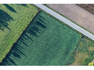 Agricultura abonará 2,6 millones por emplear métodos de producción sostenible - 0