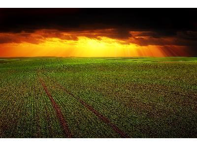 Agricultura pagará retrasos de las ayudas a ganadería y agricultura ecológica - 0
