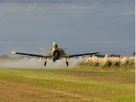 Los fitosanitarios agrícolas pueden estar relacionados con mayor incidencia de ELA y TDAH