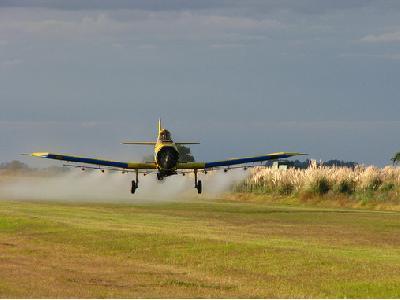 Los fitosanitarios agrícolas pueden estar relacionados con mayor incidencia de ELA y TDAH - 0