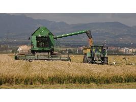Aumenta la deuda de los sectores agrícola y agroalimentario