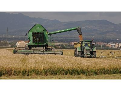 Aumenta la deuda de los sectores agrícola y agroalimentario - 0
