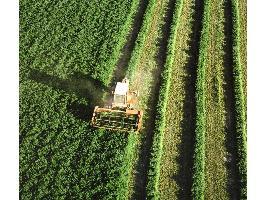 El Gobierno incrementa en 19,88 millones de euros el gasto en seguros agrarios
