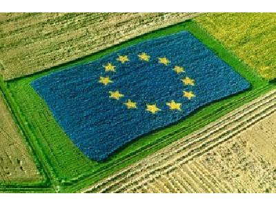 Bruselas confirma el retraso de la PAC - 0