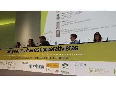 Unas explotaciones rentables y una PAC dirigida a los que se dedican a la actividad, prioridades de los jóvenes cooperativistas - 0