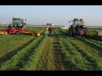Primeros pasos para conseguir una ayuda asociada al cultivo de la alfalfa e incentivar su siembra - 0