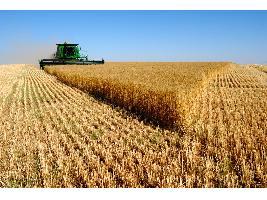 Agricultores y ganaderos perciben más de 7.411 millones de euros de las ayudas de la PAC