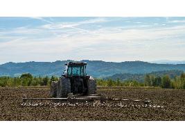 Andalucía abona en tres meses 31 millones a 7.300 agricultores y ganaderos y 300 pymes afectadas por el Covid-19.