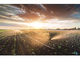 Autorizan a Agricultura el gasto para las ayudas a la mejora de infraestructuras de riego por 6,5 millones