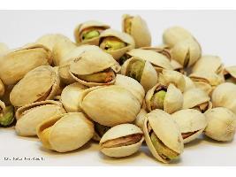El pistacho será el cultivo invitado en Agroexpo.