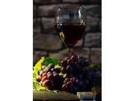Las denominaciones de origen del vino se oponen a un reglamento único para regímenes de calidad en toda Europa.