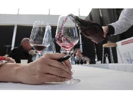 Los Premios Zarcillo reconocen a 16 Grandes Oros, entre ellos seis vinos de Castilla y León